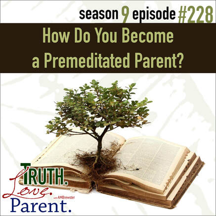 TLP 228: How Do You Become a Premeditated Parent?
